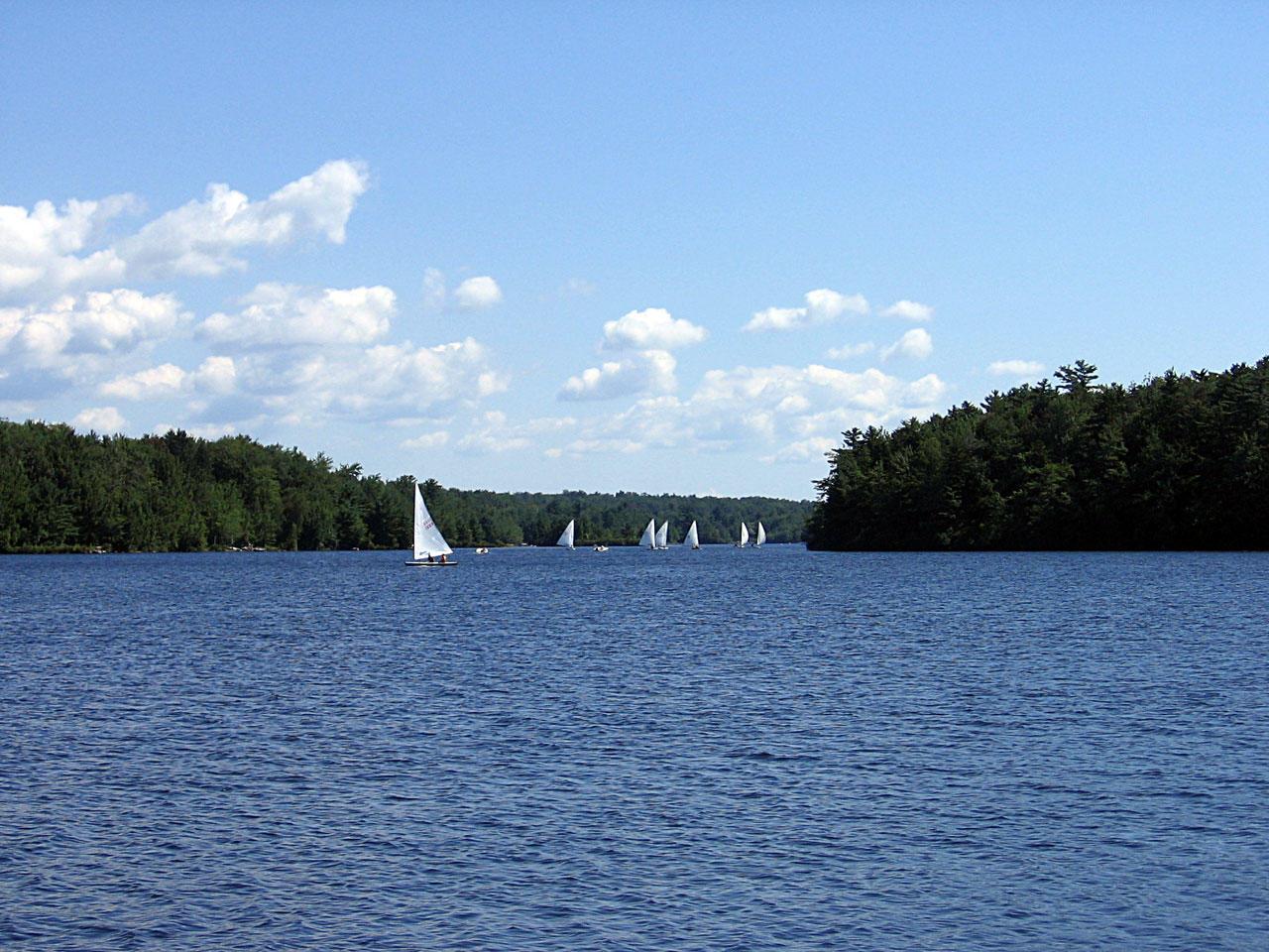 Lake Naomi Property Group, Inc. image 5