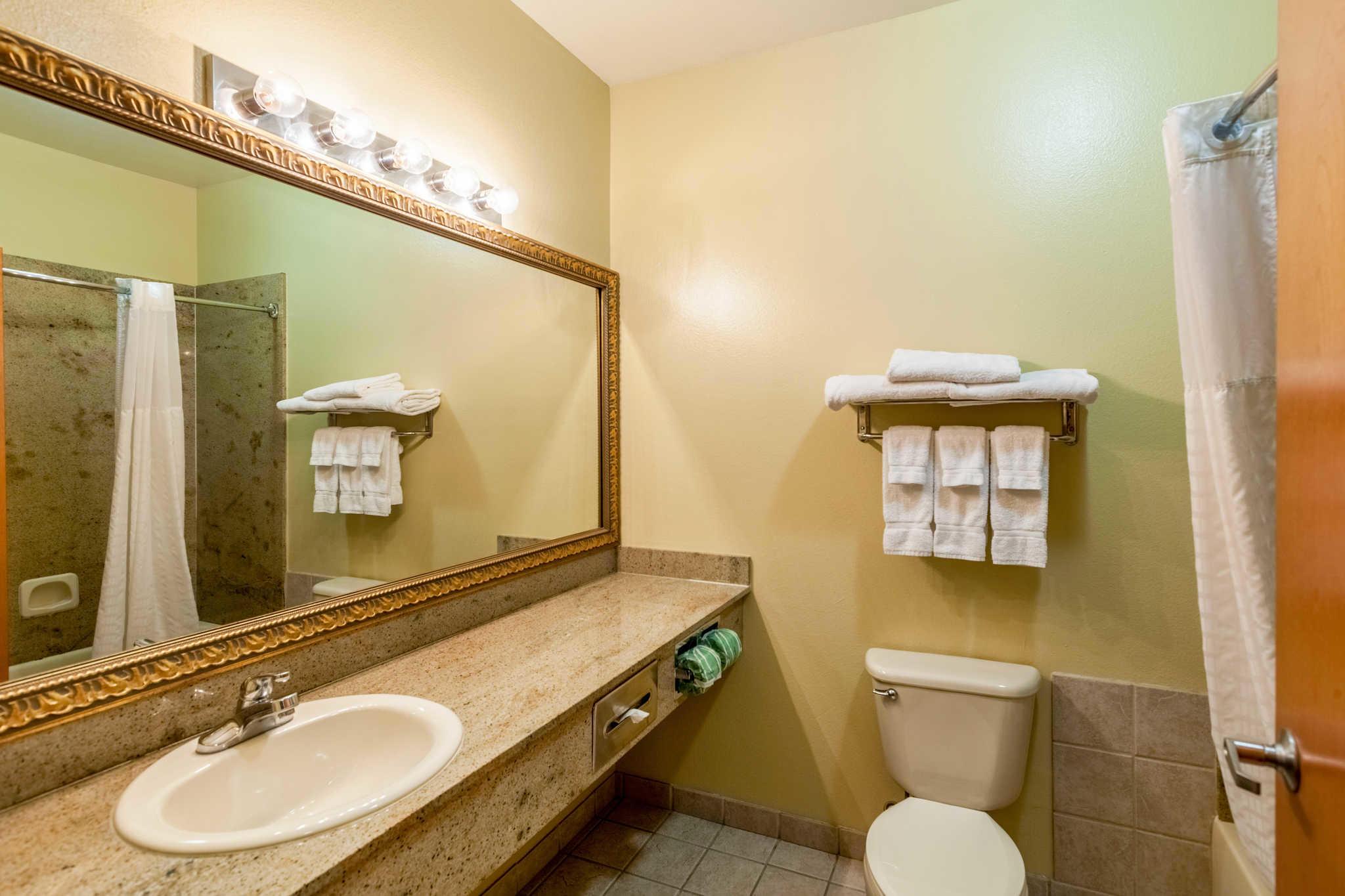 Comfort Suites Mesquite image 17