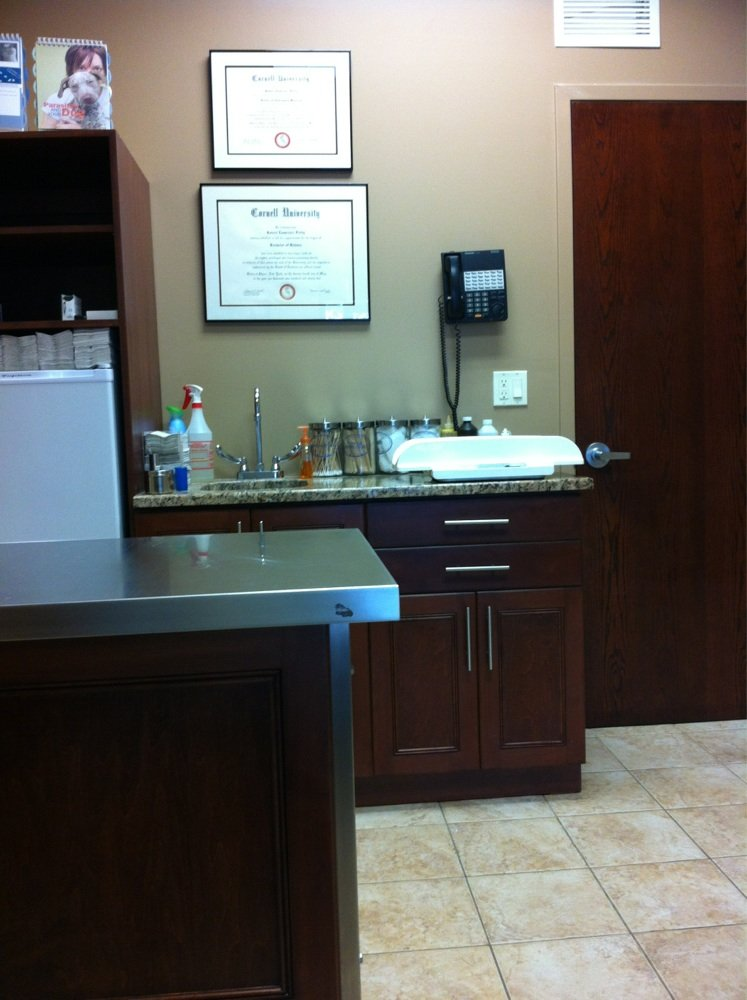 South Bellmore Veterinary Group image 0
