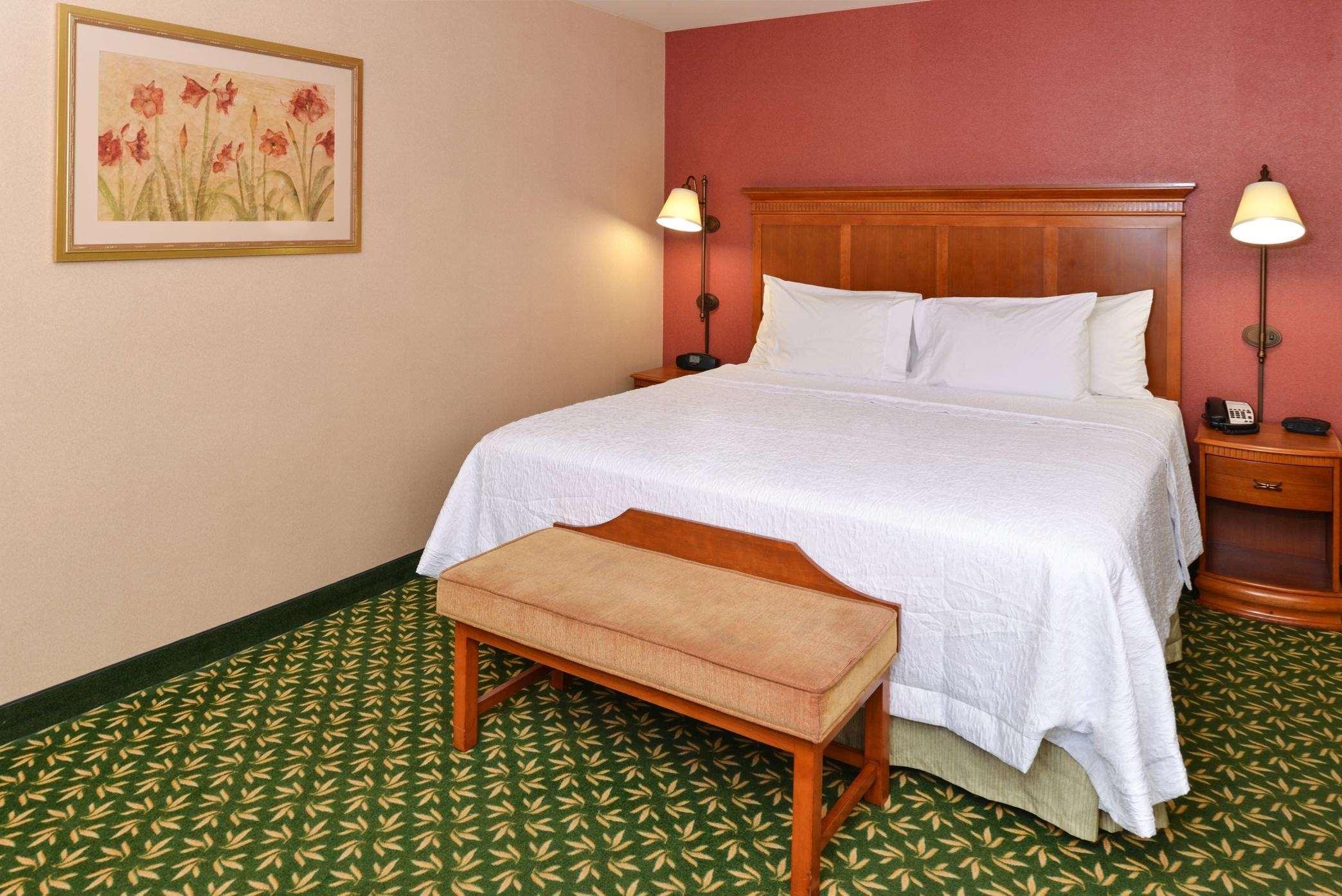 Hampton Inn & Suites Casper image 5