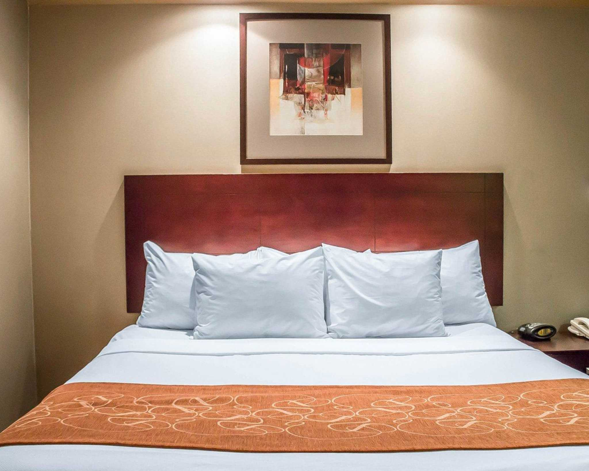 Comfort Suites Perrysburg - Toledo South image 3