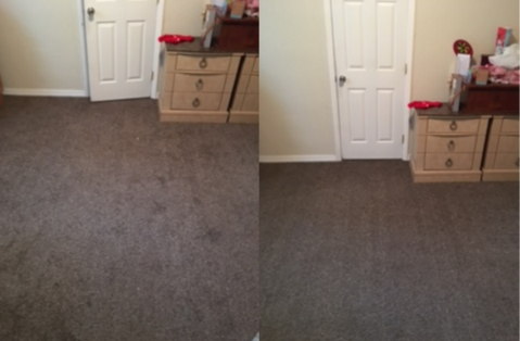 Divine Care Carpet Cleaning, Inc. image 1