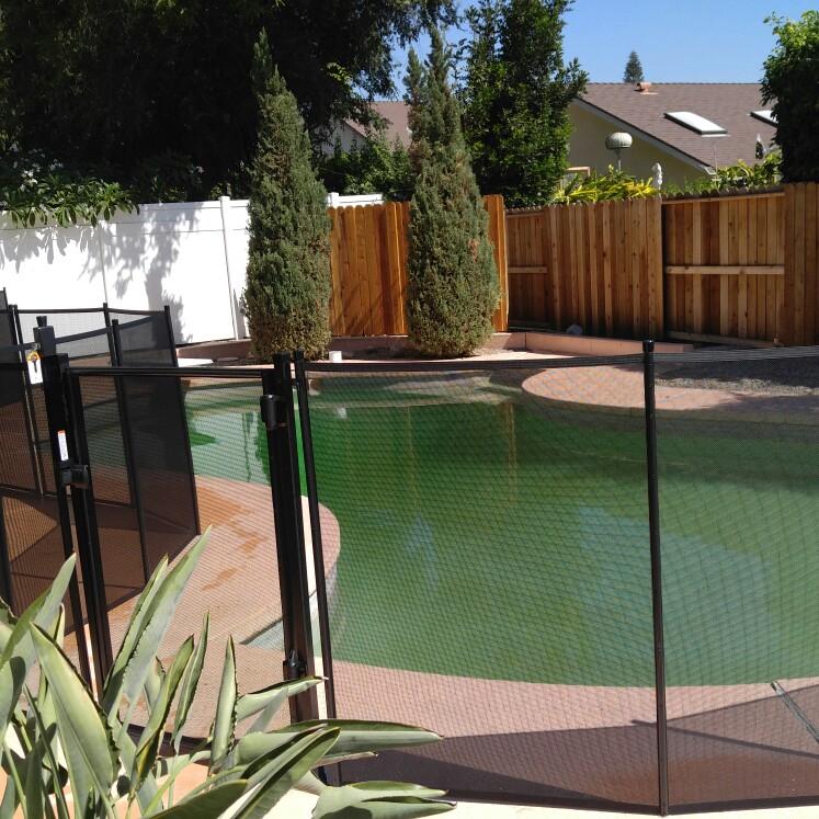 Nathans Pool Fence image 6