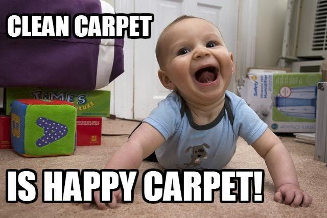 MichaelsCleaning.com/Michael's Carpet & Upholstery Cleaning