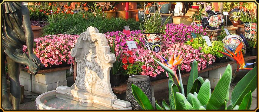 Williams Magical Garden Center & Landscape Inc image 3