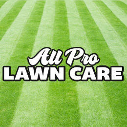 All Pro Lawn Care