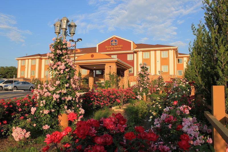 Best Western Plus Blanco Luxury Inn & Suites image 38