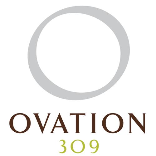Ovation 309