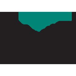 Palmetto Cardiovascular & Thoracic Associates
