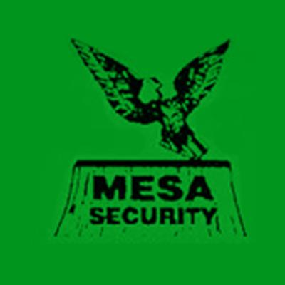 Mesa Security