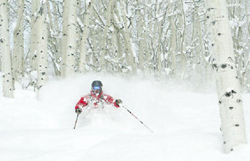 American Ski Exchange image 1
