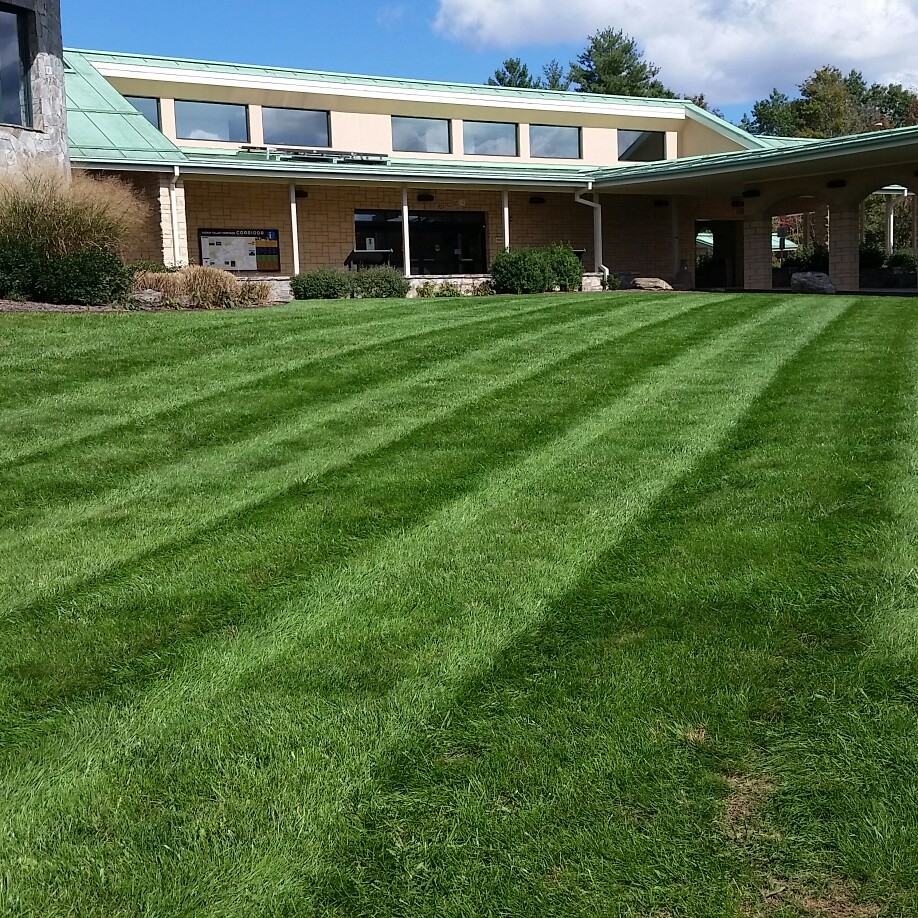 how to start a lawn care business in nc