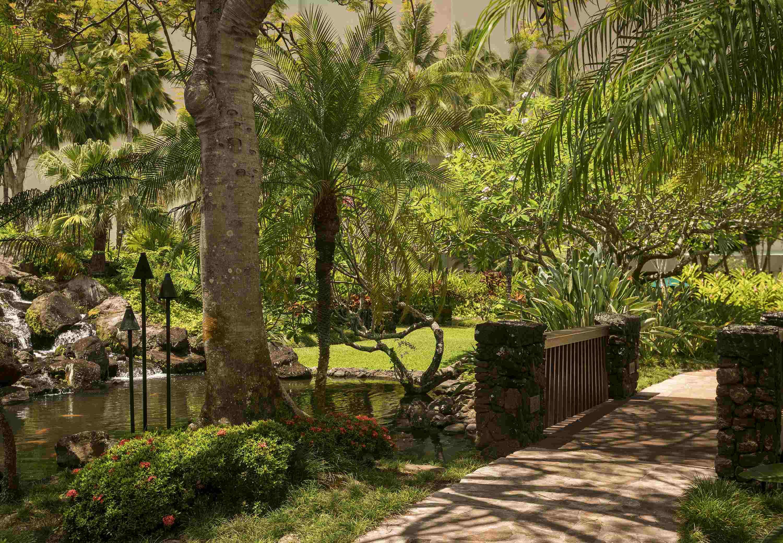 Kaua'i Marriott Resort image 25