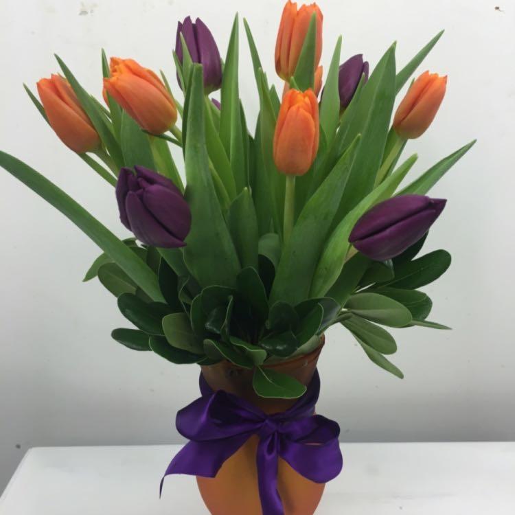 Floral Elegance image 59