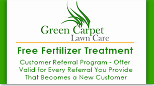 Green Carpet Lawn Care LLC in Somers, CT, photo #5