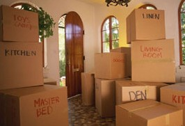 Masson Movers image 1