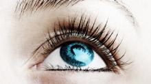 Lifetime Eye Care image 1