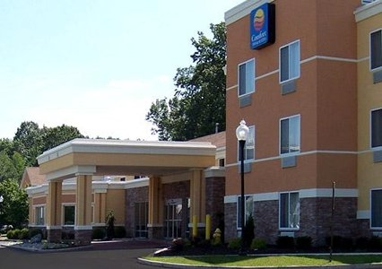 Comfort inn suites in saratoga springs ny 12866 for Saratoga springs hotels ny