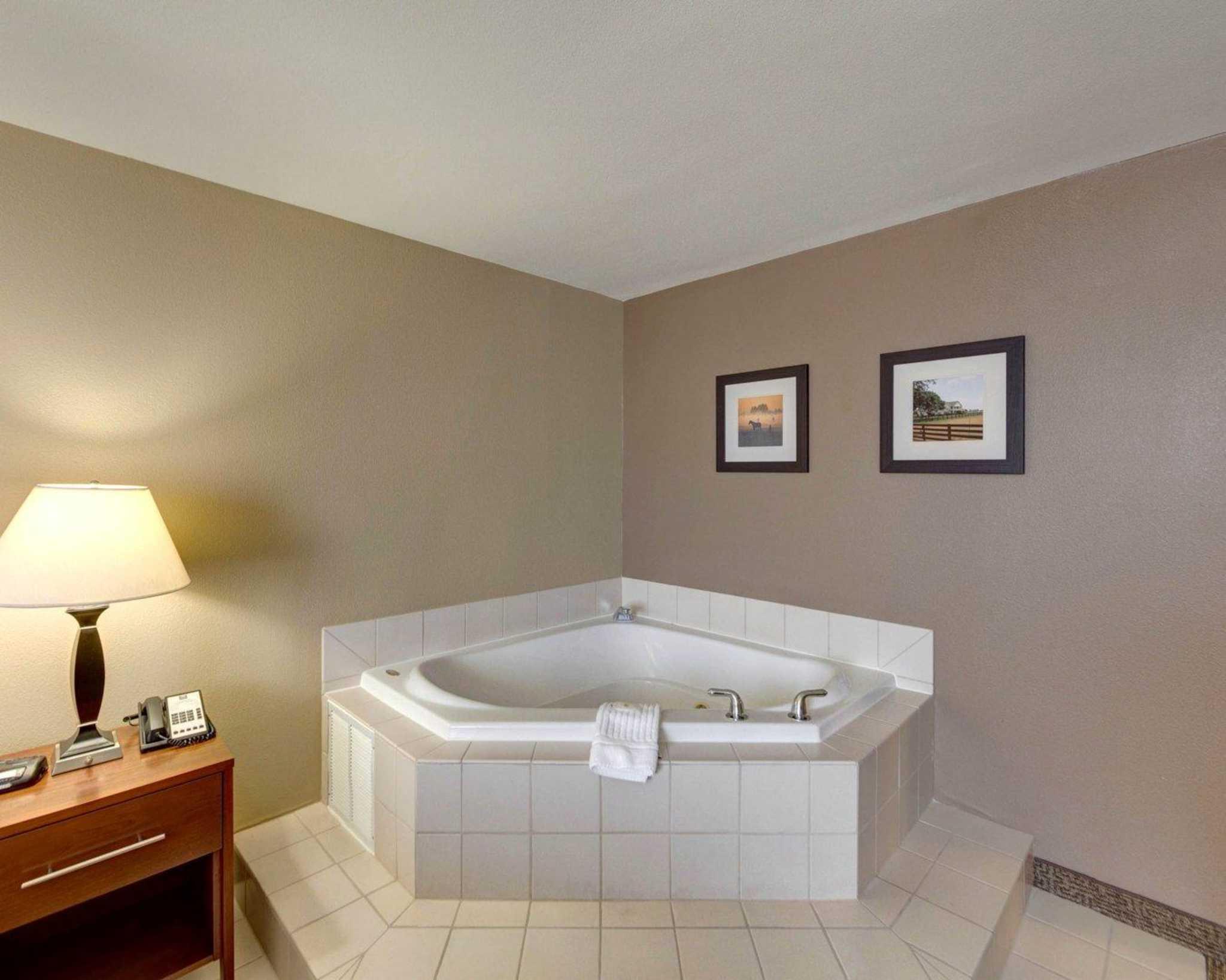 Comfort Inn & Suites Plano East image 42