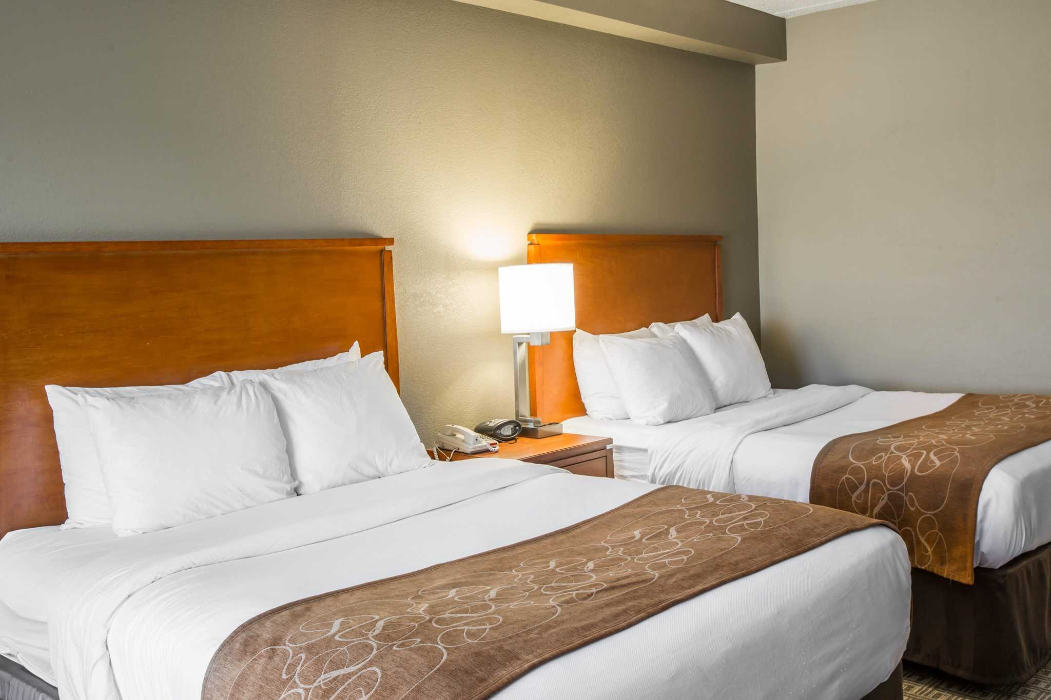 Comfort Suites Mountain Mile Area image 13