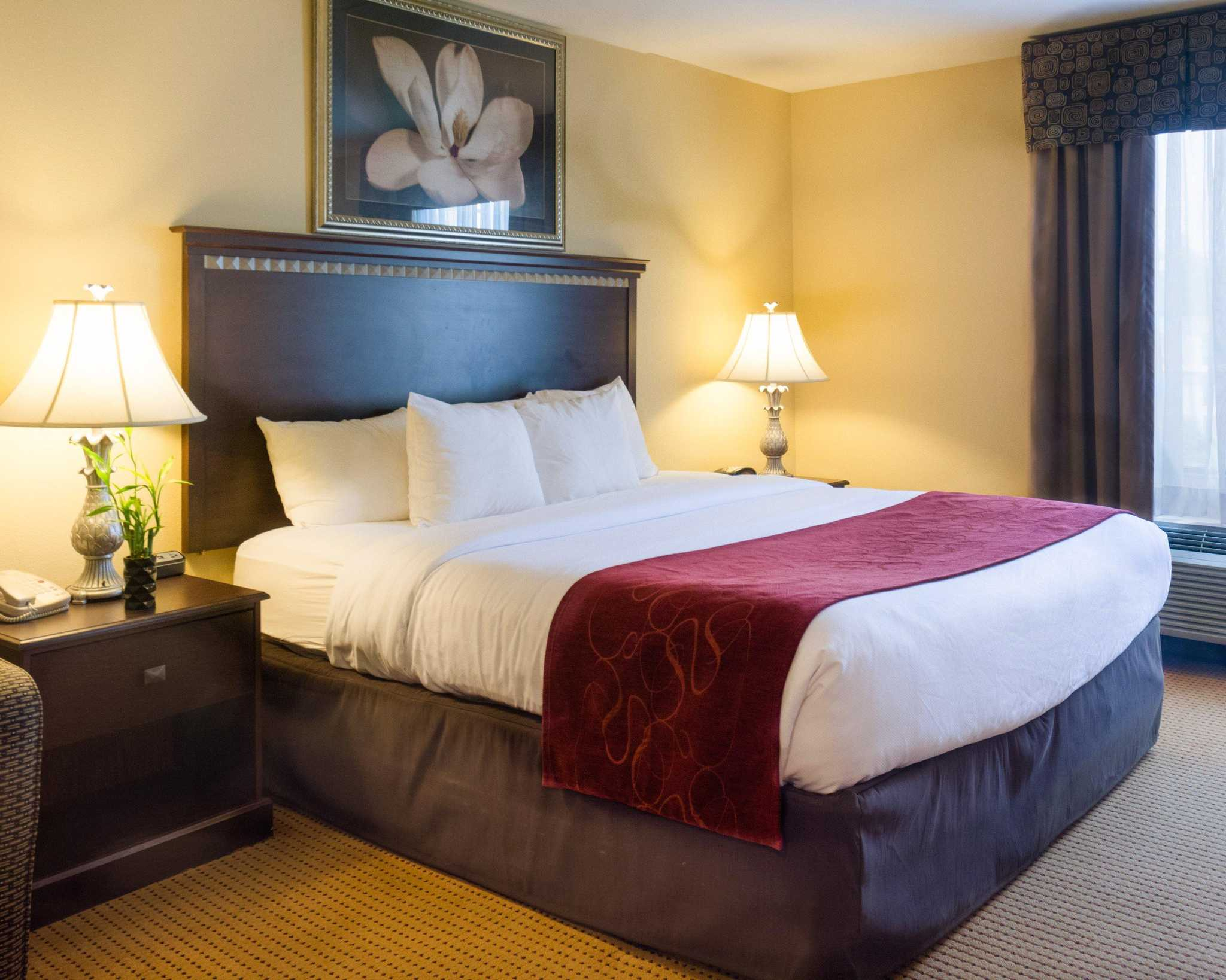 Comfort Suites Fredericksburg North image 3