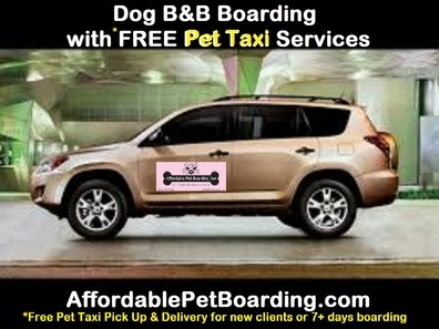 Affordable Pet Boarding Inn - cageless loving care plus FREE Pet Taxi transport - Corinth, TX 76210 - (214)303-9781 | ShowMeLocal.com