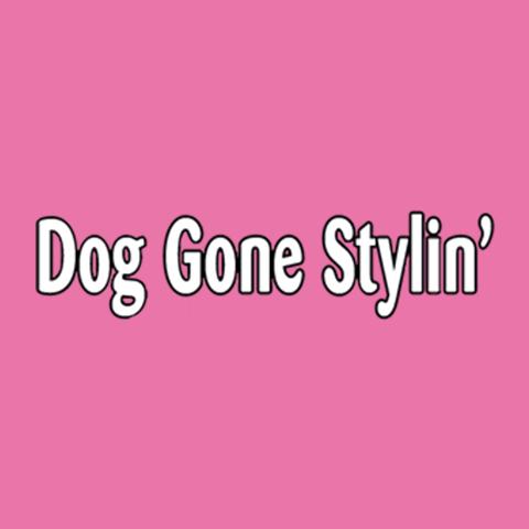 Dog Gone Stylin image 8