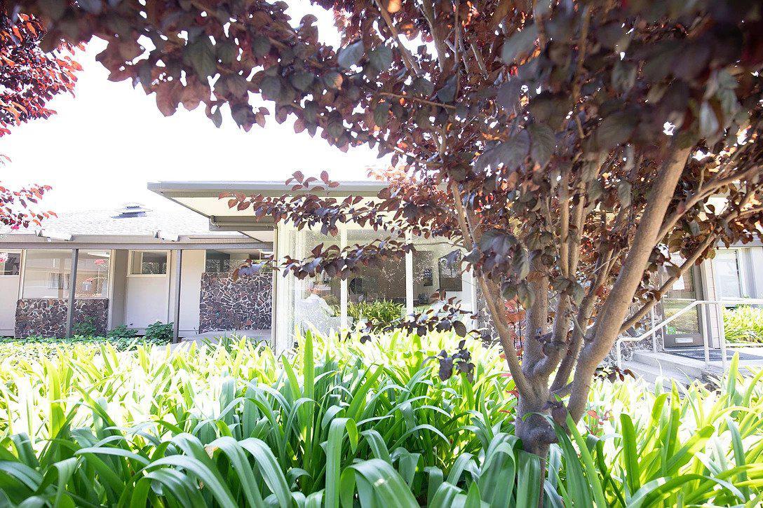 Acacia Mental Health - Sunnyvale image 5