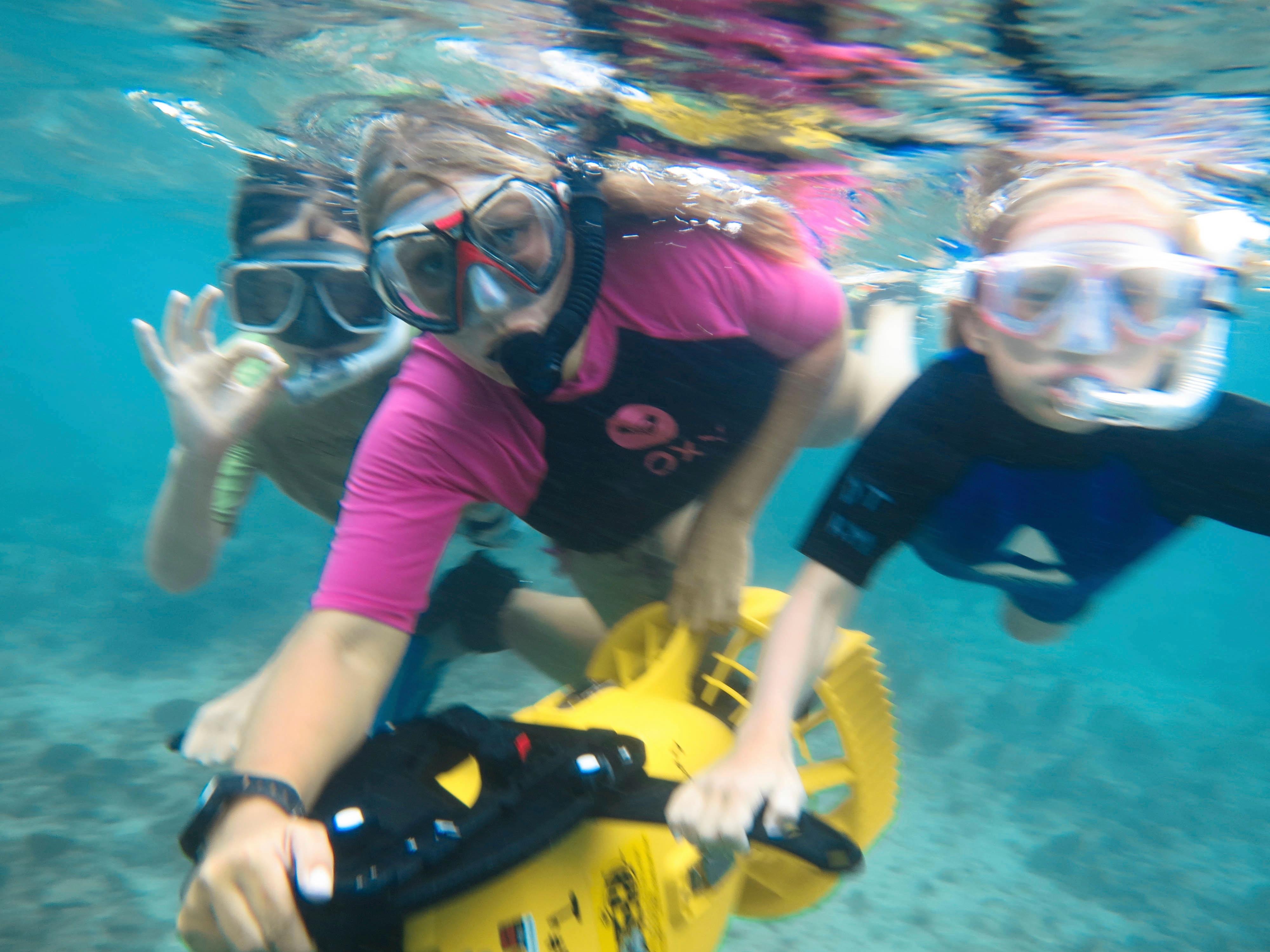 Kids Sea Camp/Family Dive Adventures image 0