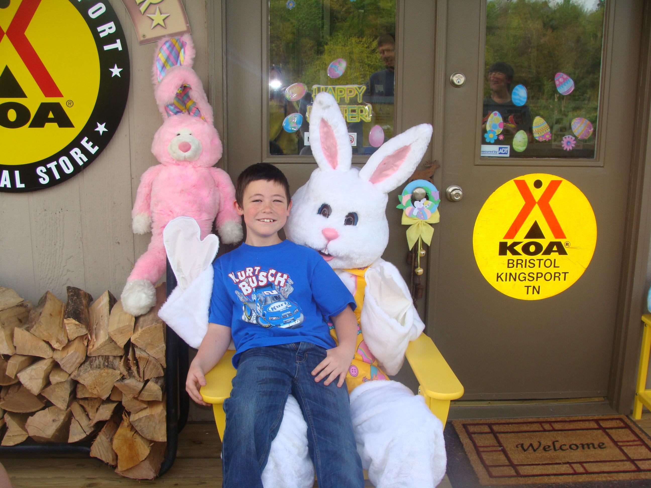 Bristol / Kingsport KOA Holiday in Blountville, TN, photo #26