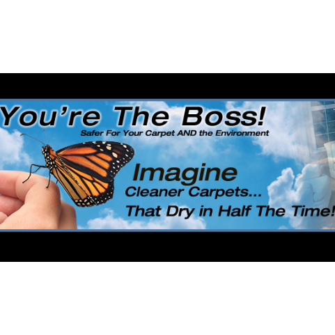 You're The Boss Carpet and Tile Cleaning - Albuquerque, NM - Carpet & Upholstery Cleaning