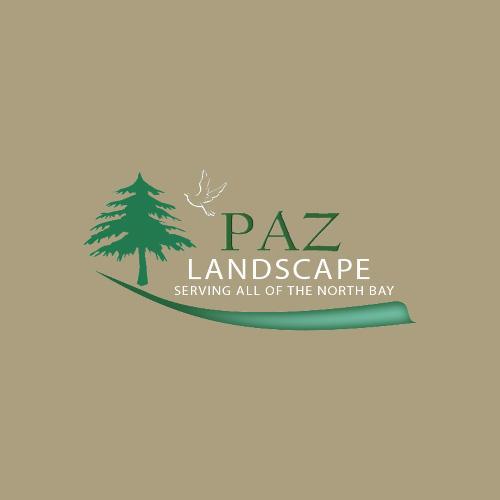 Paz Landscape