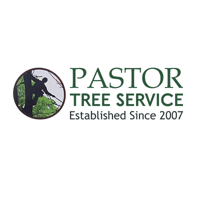 Pastor Tree Services