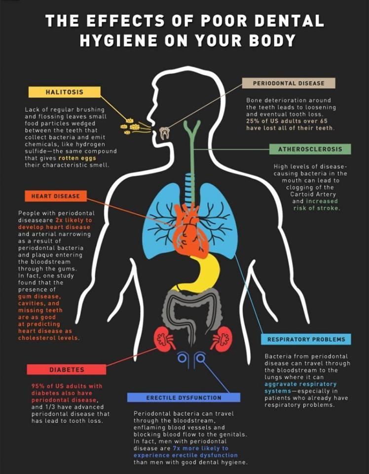 Holistic Dental Arts image 14