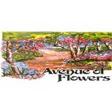 Avenue Of Flowers