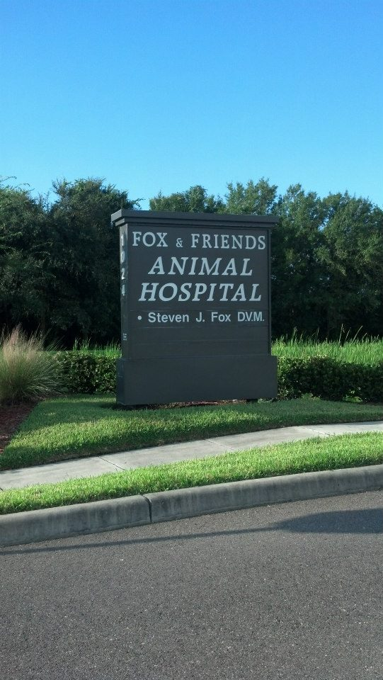 Fox and Friends Animal Hospital in Sun City Center, FL, photo #5