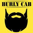 Burly Cab | Taxi & Tours | Flagstaff, AZ
