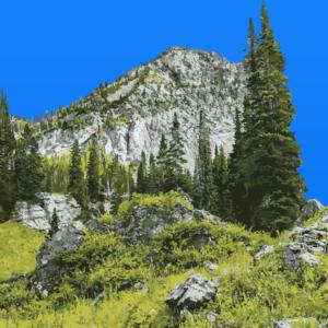 Park N' Jet - Mountain Lot image 1