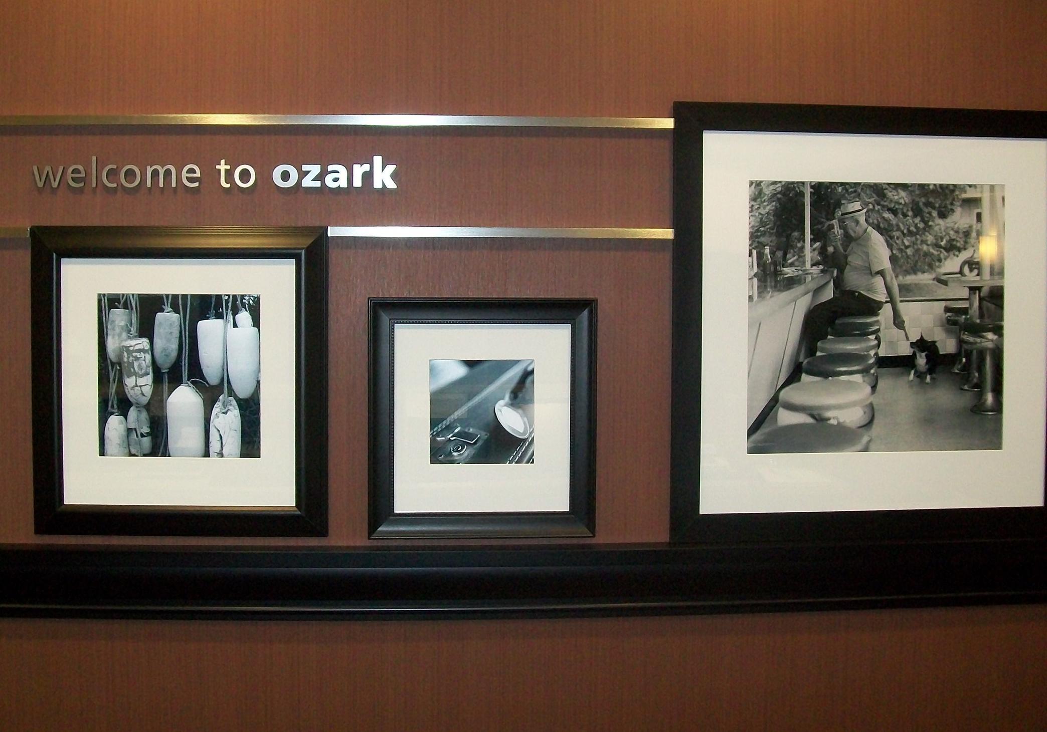 Hampton Inn Ozark image 1