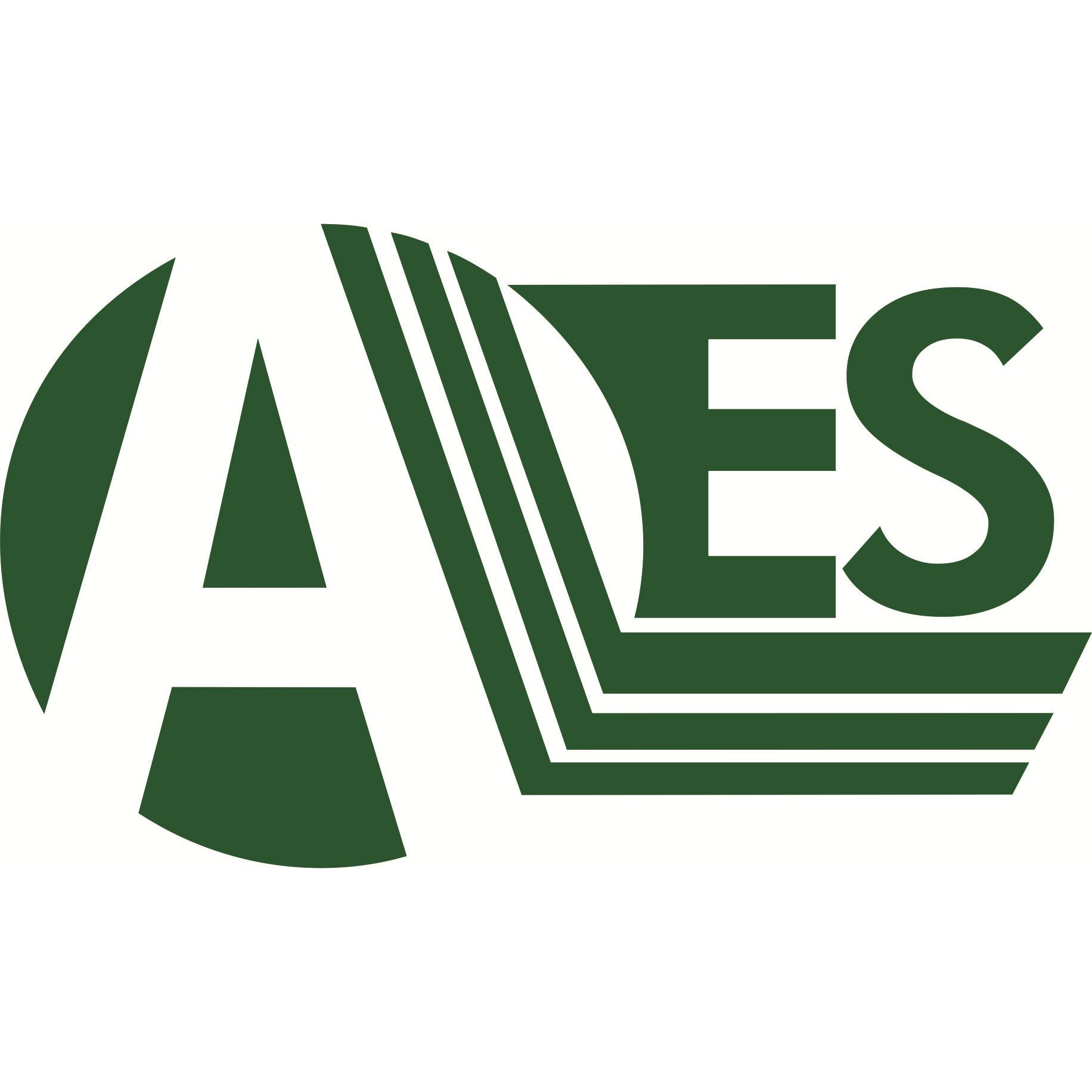 Air Environmental Services