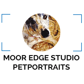Moor Edge Studio Petportraits
