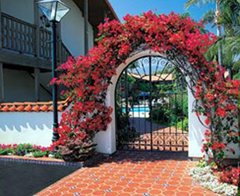 Best Western Plus Pepper Tree Inn image 14