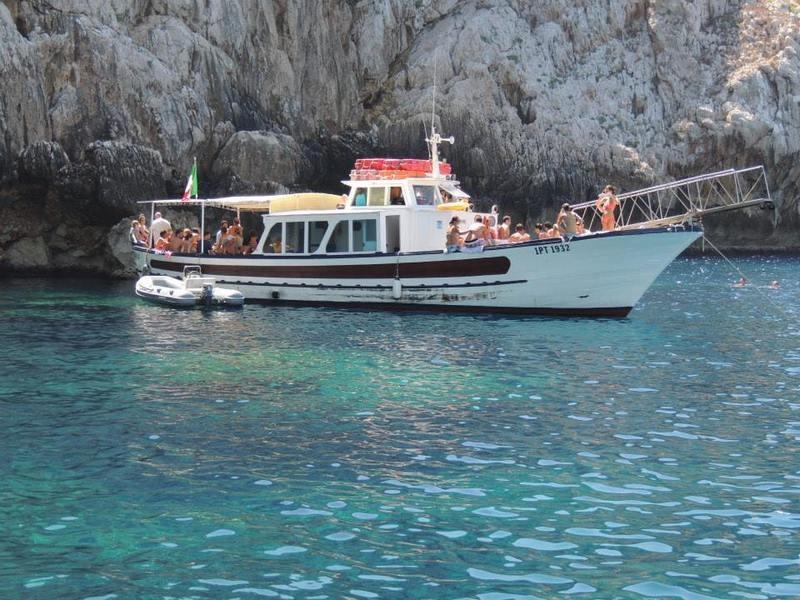 Escursioni Grotte di Nettuno - Delfinlandia