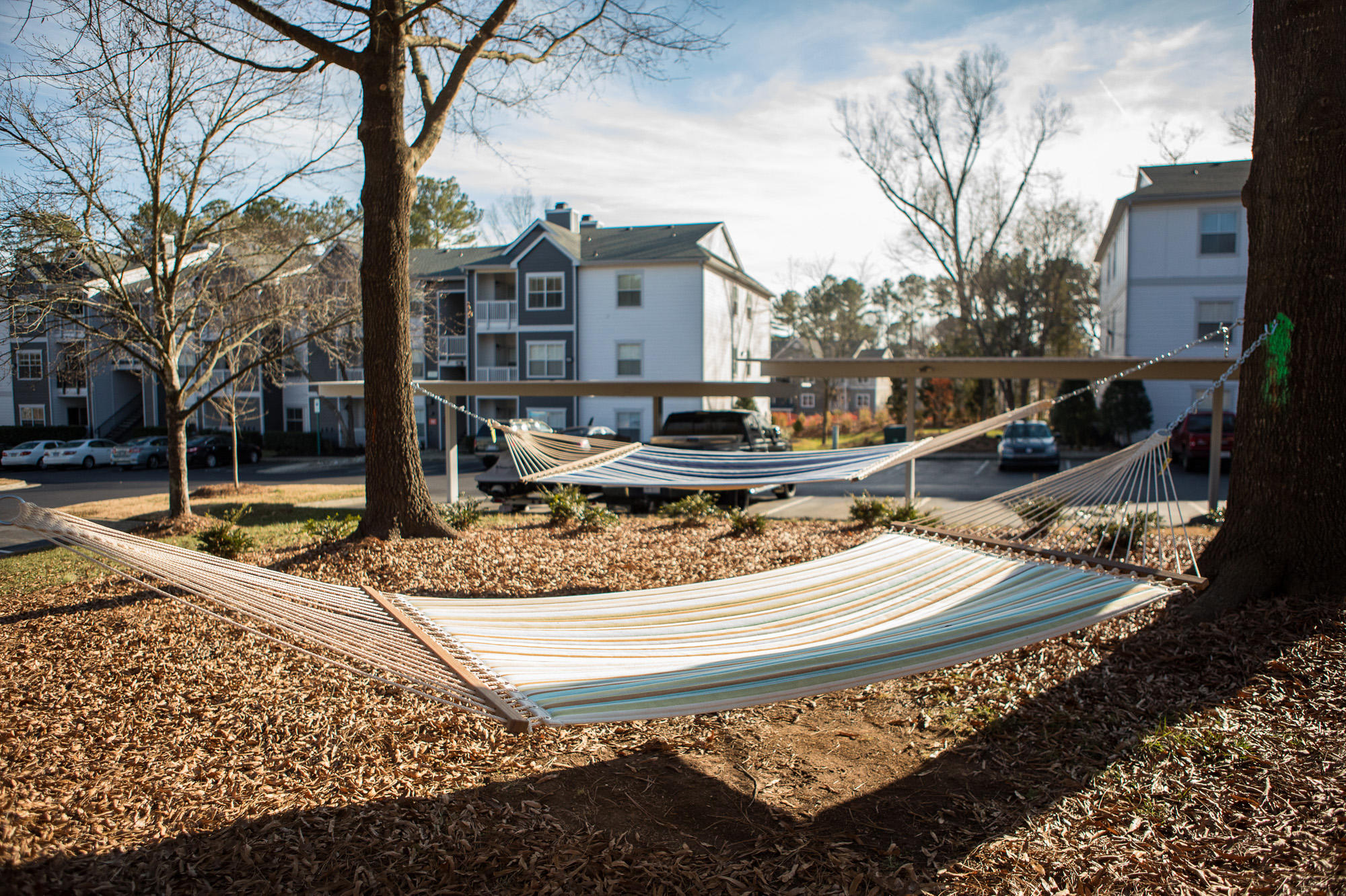 Arboretum at Southpoint by Cortland image 5