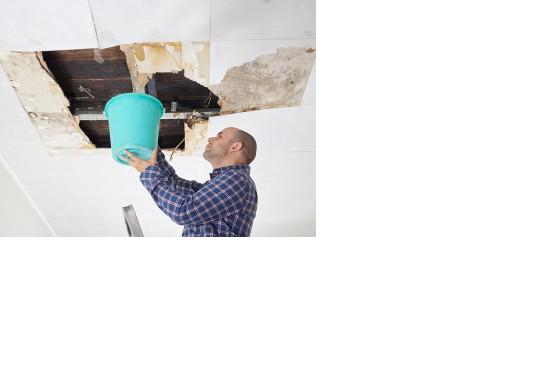 DTS Restorative Services Inc. image 0