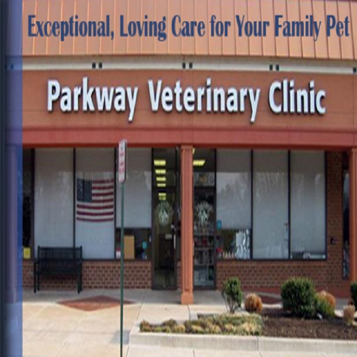 Veterinary clinic near me