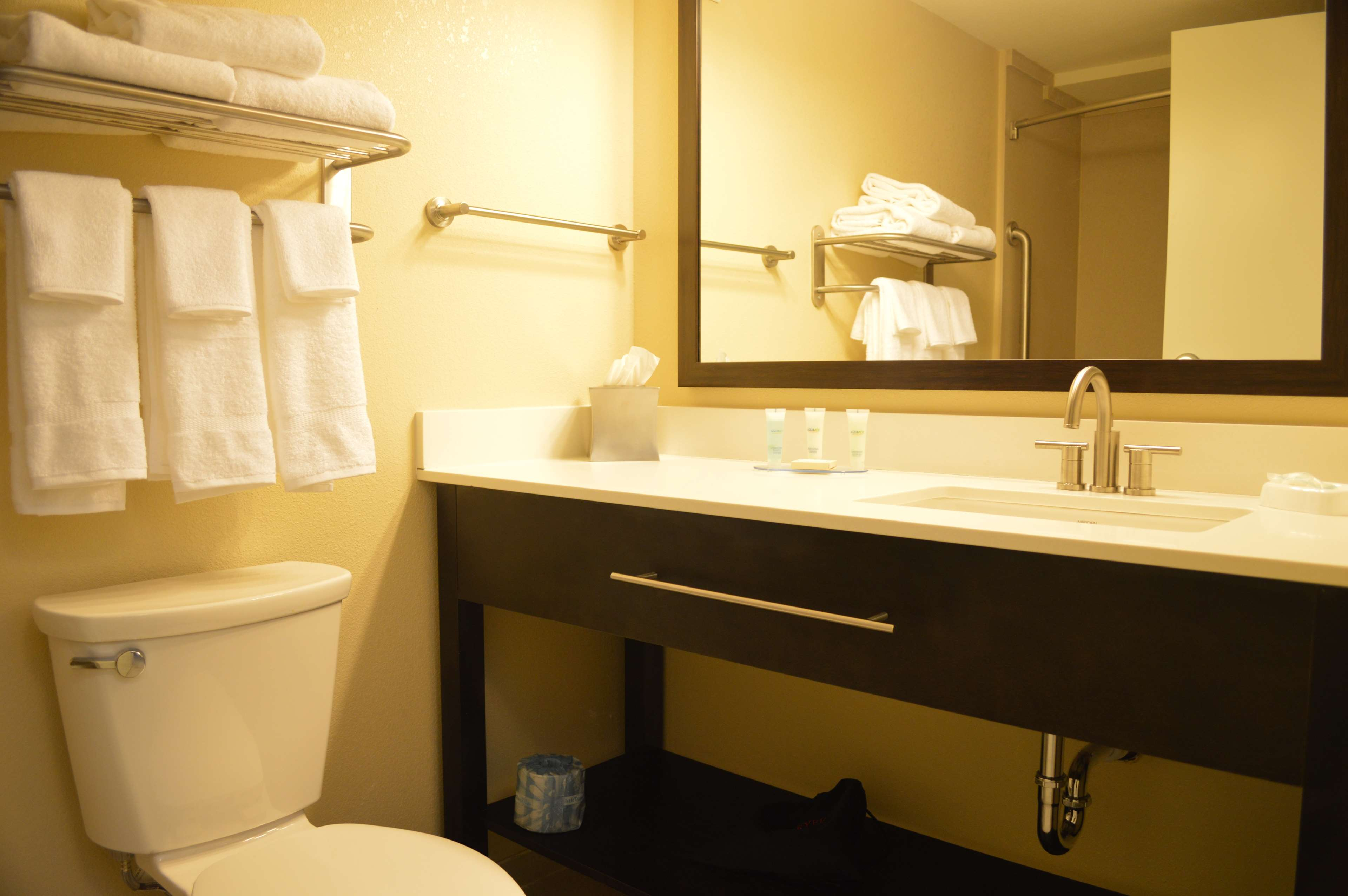 Best Western Plus Thornburg Inn & Suites image 10