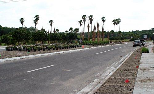Landscape 941 image 6