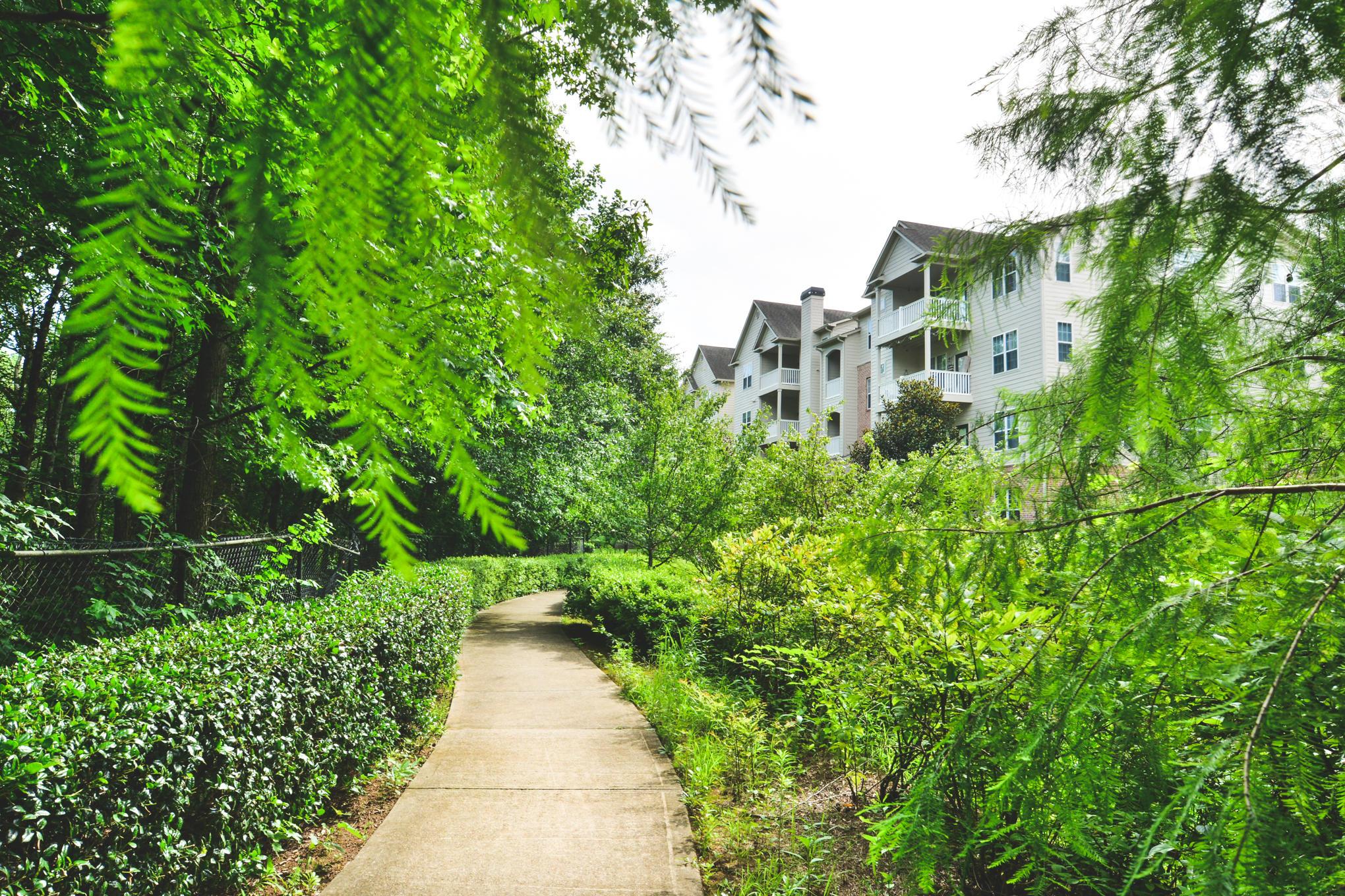 Tree Park image 4