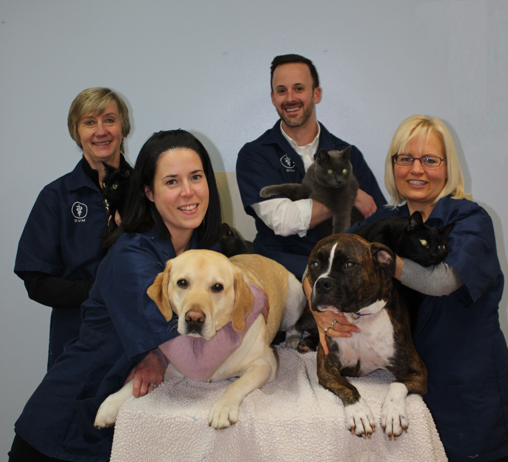 Scottsdale Veterinary Hospital in Surrey